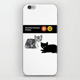 Brooklyn Subway Kittens Pair iPhone Skin