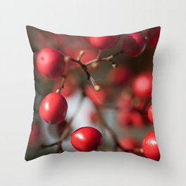 Red Winter Berries, Christmas Cranberries Throw Pillow