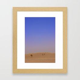 Camel in Dubai Desert Framed Art Print