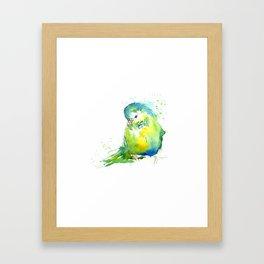 Budgie Series - IV Blue/Green Framed Art Print
