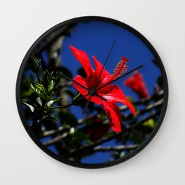 red hibiscus on dack blue Wall Clock