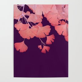 Coral Ginkgo Biloba Leaves Poster