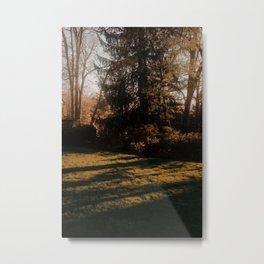 Summer Shadows Metal Print