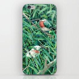 Green Kingfisher in Nature, green design iPhone Skin