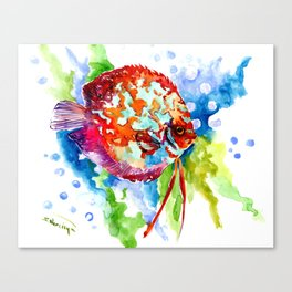 Bright Colored Aquarium Fish, Aquatic Beach Design Discus Canvas Print