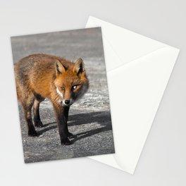 Milky-Eyed Fox Stationery Cards