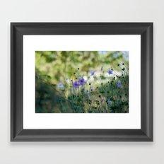 Purple meadow flowers Framed Art Print