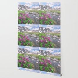 Above the tree line, in the tundra above Breckenridge, Colorado Wallpaper