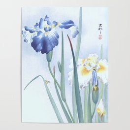 Bee And Blue Iris Flowers - Vintage Japanese Woodblock Print Art By Ohara koson Poster
