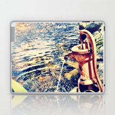 waterfountain Laptop & iPad Skin