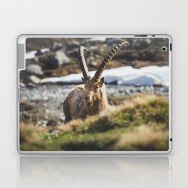 Ibex in the cold Laptop & iPad Skin