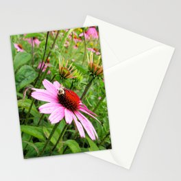 Napping Bumble Bee Stationery Cards