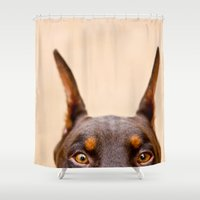 doberman Shower Curtains featuring Creeper Of My Soul by Paw Prints By Jamie