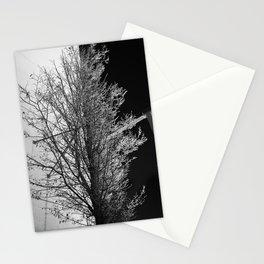 50/50 Stationery Cards