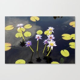 Lovely Lillies Canvas Print