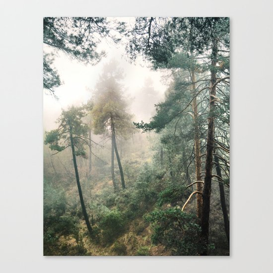 """""""Into the woods"""". Wandering into the fog Canvas Print"""