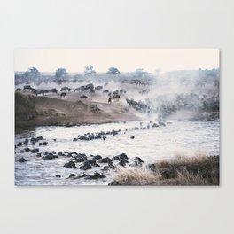 Ñu migration Canvas Print