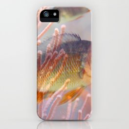 Love is a Fish iPhone Case