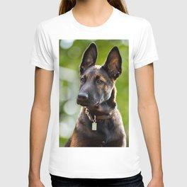 Cute Malinois - shephard puppy T-shirt