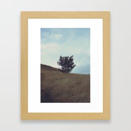 Edinburgh (8) Framed Art Print