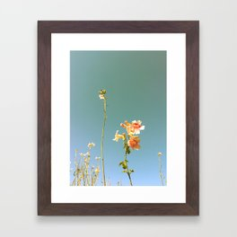 Flower in the sky Framed Art Print