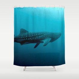 Whale shark juvenile Shower Curtain