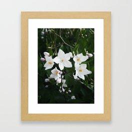 April's Flowers Framed Art Print