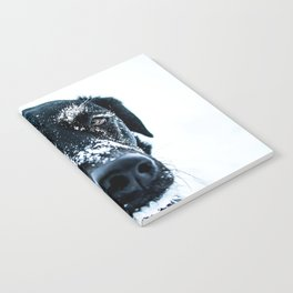Snow Dog // Cross Country Skiing Black and White Animal Photography Winter Puppy Ice Fur Notebook