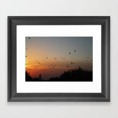 migrating birds Framed Art Print