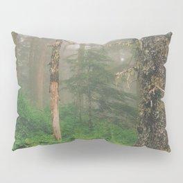 Foggy Forrest Pillow Sham
