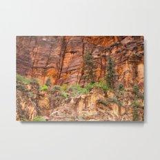 The Narrows, Zion Metal Print