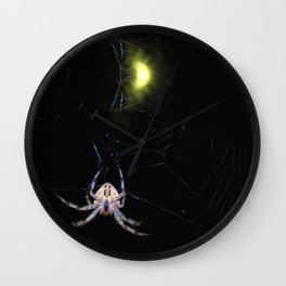 araneus diadematus Wall Clock