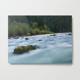 Stillness In Motion Metal Print