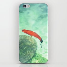 Fish watercolor III iPhone Skin