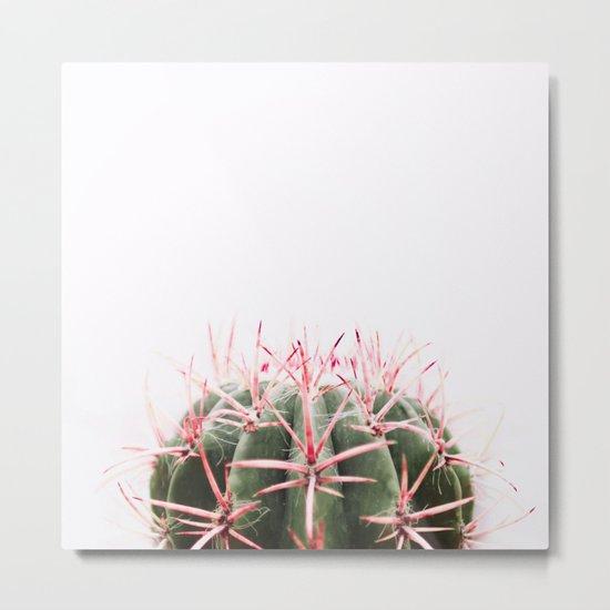 cactus red Metal Print