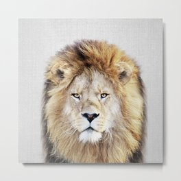 Lion 2 - Colorful Metal Print