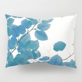 Cyan Pillow Sham