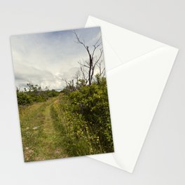 a path in the highlands Stationery Cards