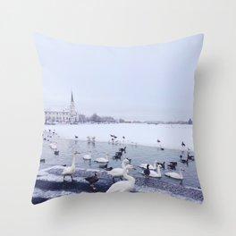 Reykjavik Duck Pond Throw Pillow