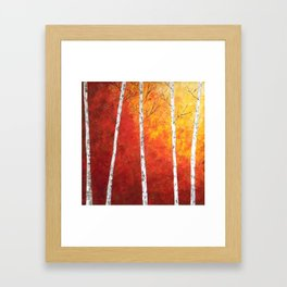 Sunset Birches Framed Art Print