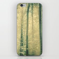 into the woods 16 iPhone & iPod Skin