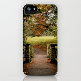 Frozen 2 in the Autumn iPhone Case