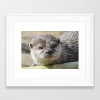 otter Framed Art Prints featuring Otter by PICSL8
