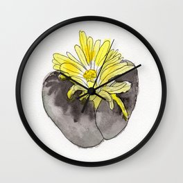 Lithops Blooming Wall Clock