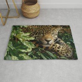 Jaguar - At Rest Rug