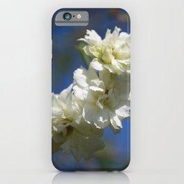 Deutzia Cream Petals Against Blue Sky iPhone Case