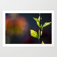 Leaves in a colorful world Art Print