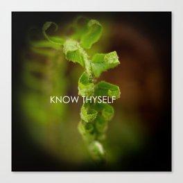 Know Thyself Canvas Print