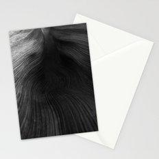 Palms 1.1 Stationery Cards
