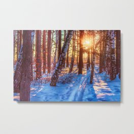Ski track in the winter forest Metal Print